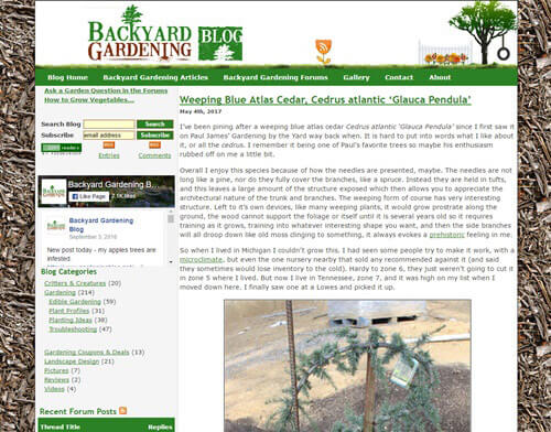 Backyard Gardening Blog screenshot