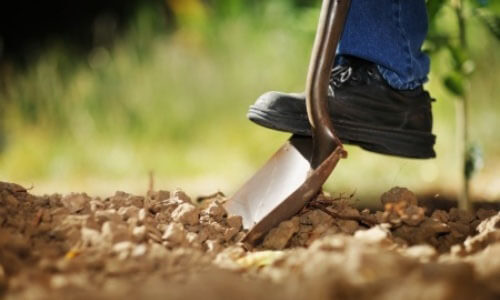 curved blade shovel