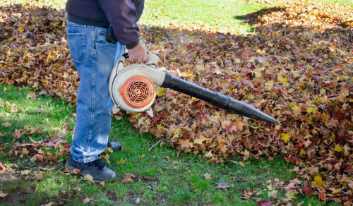 using leaf blower in yard