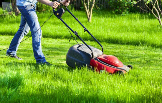 best electric lawn mower buying guide