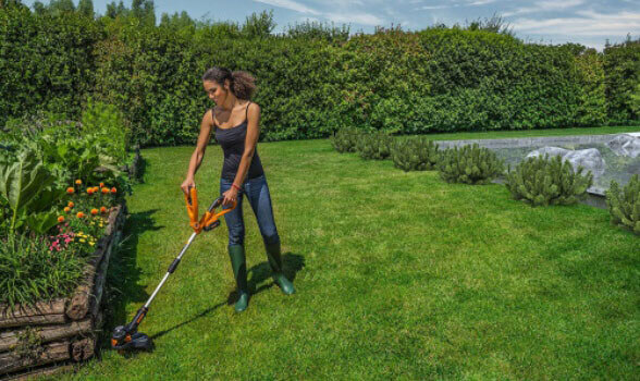 WG155 - good small weed trimmer