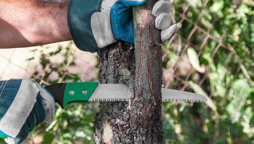 best pruning saws