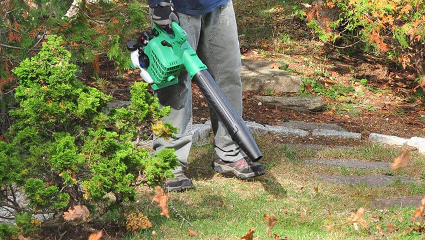 best gas leaf blower (handheld)