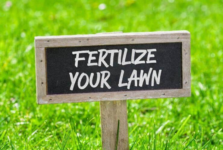 best lawn fertilizers