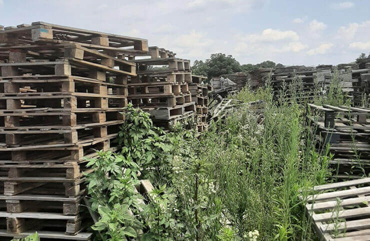 Inexpensive pallet fence