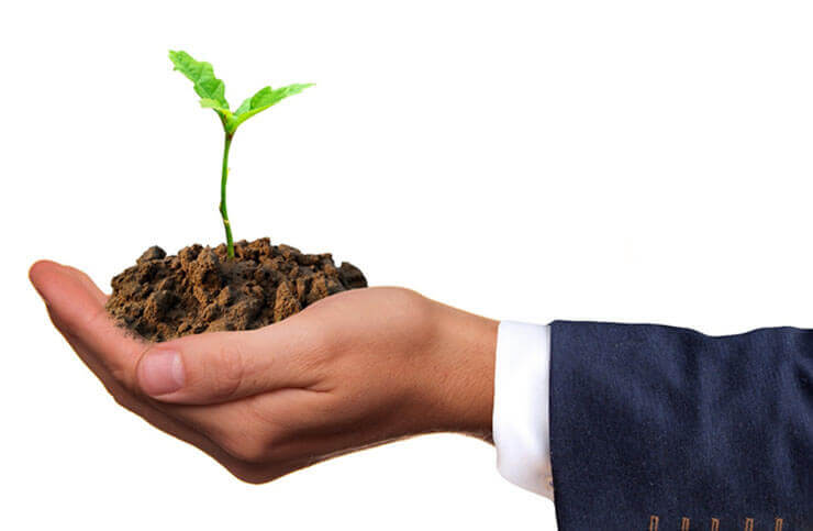 It's time to plant your seed