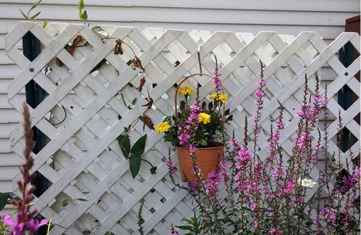 Simple wooden framed lattice fence